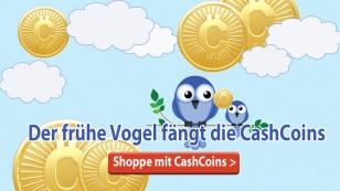 vogel-faengt-die-cashcoins
