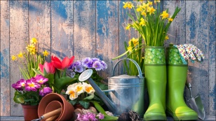 wiosna-ogrod-rabat