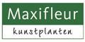 Maxifleur-kunstplanten
