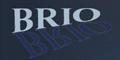 BRIO Kontrollspiegel