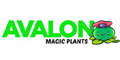 Avalon Magic Plants