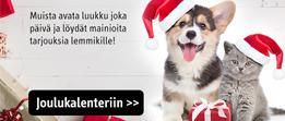 PetenKoiratarvike.com