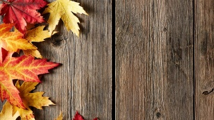 tervetuloa-syyskuu-ja-mahtavat-ulkoilusaat