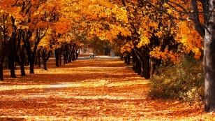 buoni-propositi-autunno