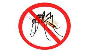 voorkom-muggenbulten