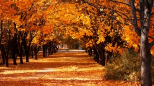 happy-autumn