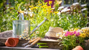 decora-tu-casa-con-las-flores-ms-coloridas
